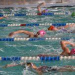 nageurs6